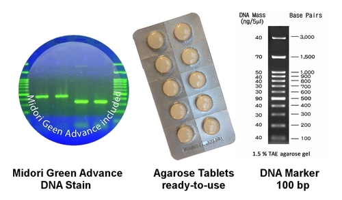 electrophoresis kit: agarose tablets, DNA marker and Midori Green stain
