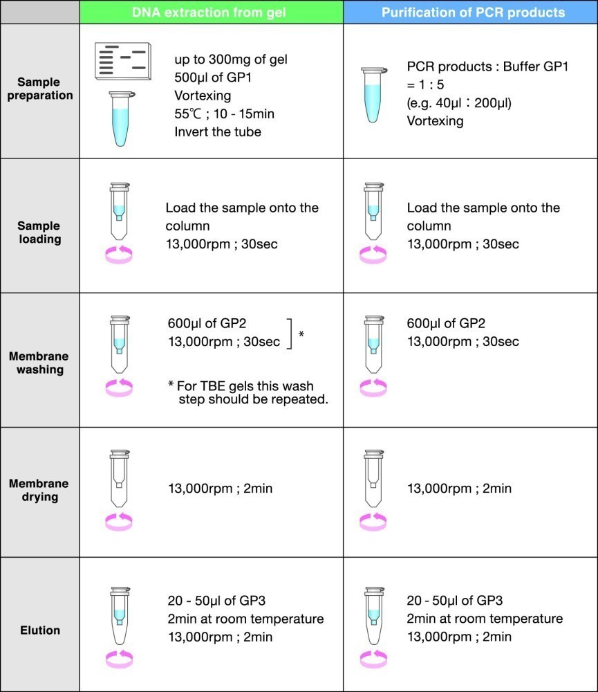 FastGene Gel/PCR Extraction Kit - protocl at a glance